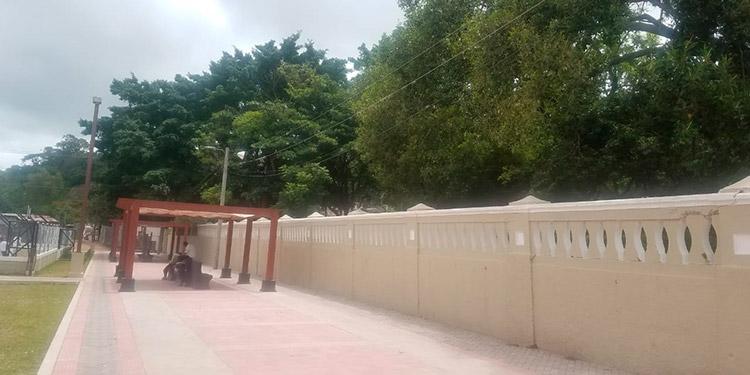 Desde que se hicieron mejoras al parque, han comenzado a llegar durante el día muchos jóvenes y capitalinos en general.