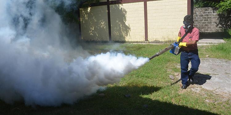 Los centros educativos, viviendas están siendo fumigadas y aplicación del BTI en pilas y barriles.