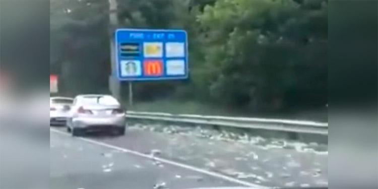 Llueven billetes en carretera de Atlanta tras abrirse camión blindado