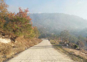 En los últimos días el ambiente se ha visto enrarecido en la zona debido a los incendios forestales que junto a la tala de árboles, están provocando un  desastre ecológico.