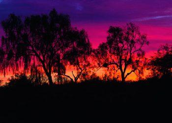 Las noches se hacen más prolongadas y las horas de claridad diurna más pocas.