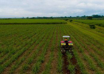Más de 100 hondureños retornados resultarán beneficiados en el contexto de esa iniciativa de Responsabilidad Social Empresarial.