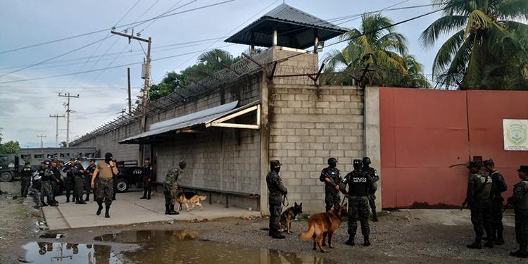 La operación inició con pesquisas del batallón canino.