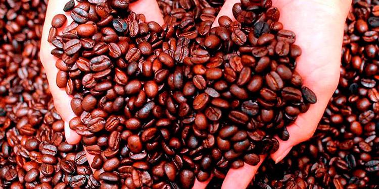 Las exportaciones de productos agroindustriales sumaron 1,439.9 millones de dólares, 130.9 millones menos, debido al bajo precio de café.