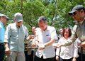 Se reforestarán más de 18,000 hectáreas afectadas por cambio climático y gorgojo en Comayagua, Olancho, Francisco Morazán y Yoro.