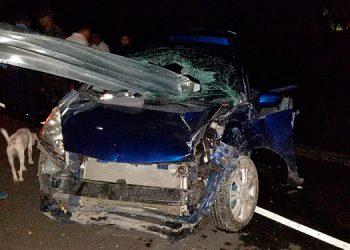 Autoridades policiales indicaron que la causa del accidente fue el despiste del automotor en la carretera.