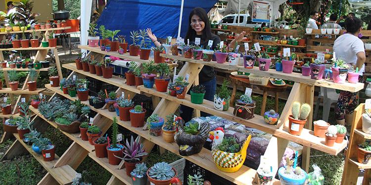 El festival incluye exposiciones de pinturas, jardines temáticos, exposiciones florales, mercado verde, venta de promociones, jardín mascotas.