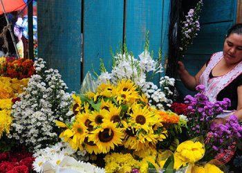 Vendedores ofrecen todo tipo de flores en las cercanías del Cementerio General y del Instituto Mixto Hibueras.