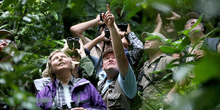 "La Asociación Hondureña de Ornitología (Asho) informó que en total 59 observadores de aves o ""eBirders"" se unieron a la actividad a nivel nacional."