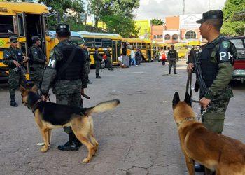Los efectivos de la Policía Militar y agentes del Comando Canino ejecutan inspecciones para localizar personas portando armas de fuego y blancas, así como sustancias prohibidas.