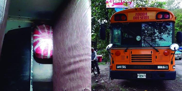 Decomisan supuesta marihuana que iba en bus de Tocoa, Colón - La Tribuna.hn