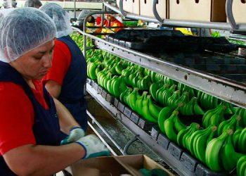 La economía nacional resultó afectada por los bajos precios internacionales de bienes exportables que desincentivaron la producción, menor inversión y conflictos de tipo político y social.