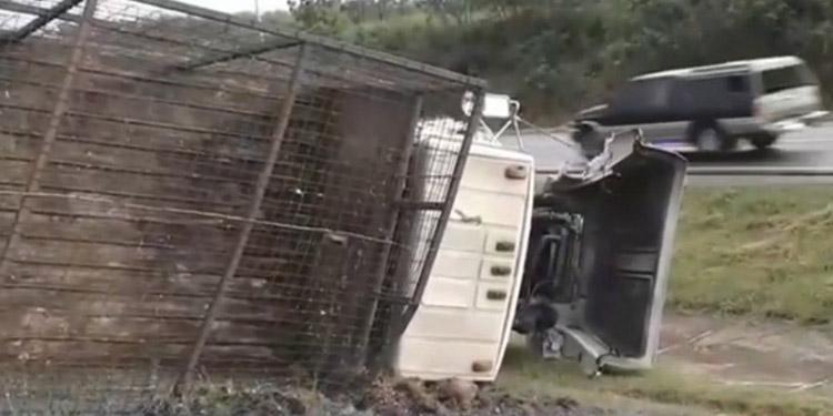 El accidente se registró la mañana de ayer en la comunidad de Las Cañas.