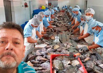 El Módulo Comunitario es una empresa autosostenible, incluyendo la producción y venta de tilapias.