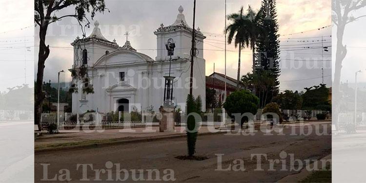 Pobladores de Danlí mandan claro mensaje al plantar palmeras en los baches - La Tribuna.hn