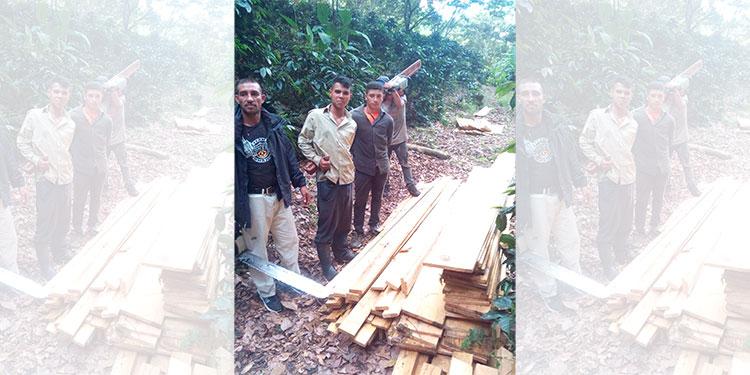 Infraganti capturan a cuatro depredadores del bosque en La Tigra - La Tribuna.hn