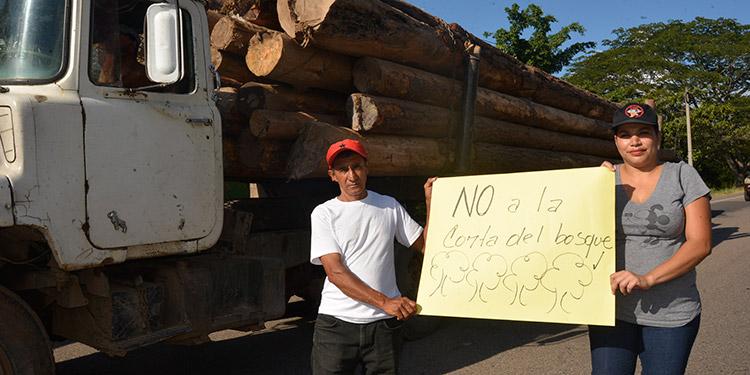 Fuerzas vivas de Yuscarán piden un cese inmediato al corte de árboles, se están quedando sin agua.