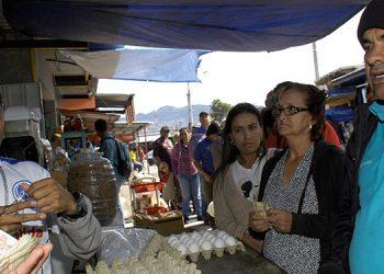 En las ventas de huevos en la Feria del Agricultor y el Artesano los consumidores realizaron grandes filas para poder comprar un cartón.