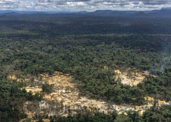La Amazonía brasileña ha experimentado una deforestación acelerada en los últimos años.