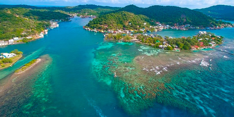 Conservacionistas hondureños en Islas de la Bahía ya están preparados para hacerle frente al síndrome blanco. Fotos: Shawn Jackson, Nidia Ramos y J. Quintana.