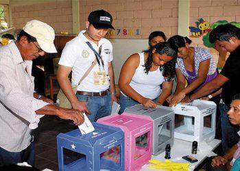 OEA elabora una guía para organizar elecciones en tiempos de pandemia