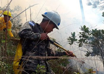En el departamento de Francisco Morazán, los elementos del C-9 recorrerán 30 kilómetros para prevenir incendios forestales.