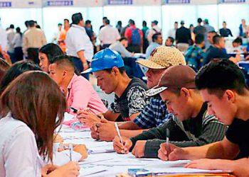 Un 48.0 por ciento de los desempleados del país, son jóvenes menores de 25 años.