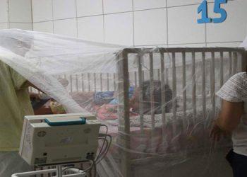 Reporte epidemiológico de la Sesal, confirman la muerte de cinco  personas por dengue y cinco mil 348  contagios.
