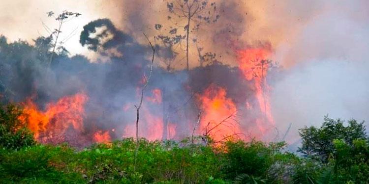 os bomberos se desplazan por la zona para sofocar las llamas con agua extraída de las represas capitalinas.
