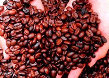 El deterioro en los precios del café, banano y zinc afectó los envíos al mercado internacional.