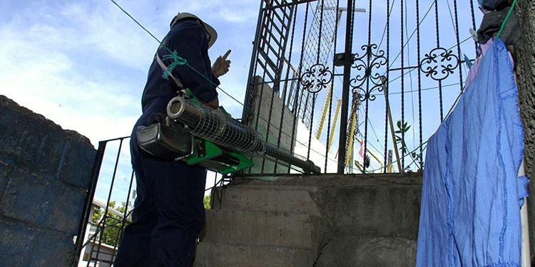 os técnicos realizan intensas fumigaciones en las colonias infectadas, para prevenir muertes por dengue.