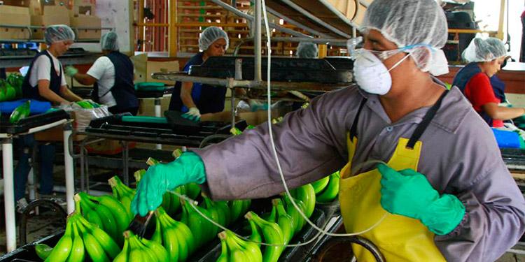 Las autoridades económicas a nivel regional permanecen alerta ante una desaceleración de la economía.