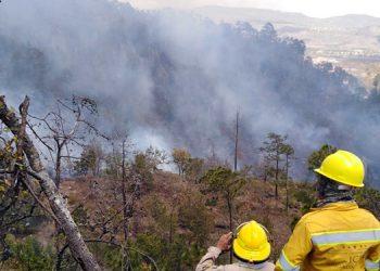 Reportan nuevo incendio en El Picacho; denuncian que fuego es provocado