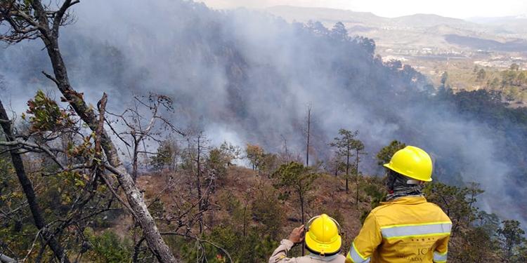 Evalúan contaminación por carbono en plena emergencia por COVID-19 en Honduras (Vídeo)