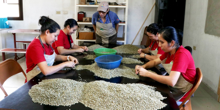 Pequeños comerciantes de Honduras en riesgo de pasar a filas de desocupados