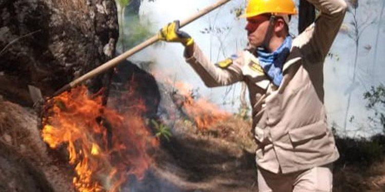 Los bomberos están trabajando muy fuerte, esto debido a los inumerables incendios forestales que se están desarrollando en muchos lugares del país.