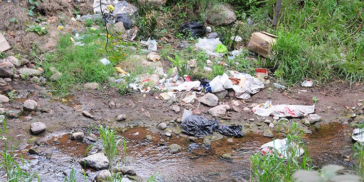 Irresponsables tiran basura en quebrada