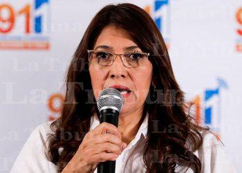Ministra de Salud: sistema hospitalario público tiene su capacidad limitada