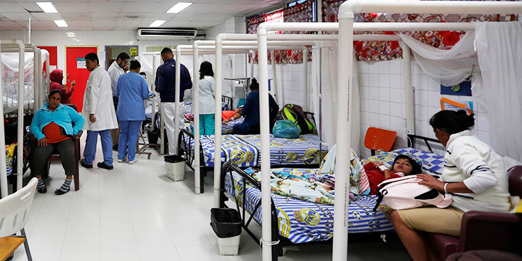 Se elevan a ocho los fallecidos por dengue grave en Honduras en 2020