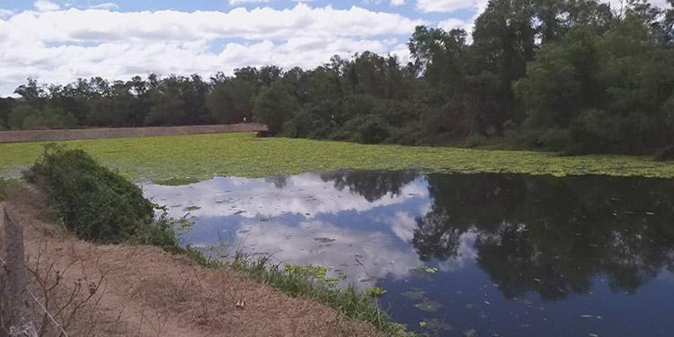 Pobladores y autoridades municipales mostraron documentos para la rehabilitación del cauce del río Choluteca.
