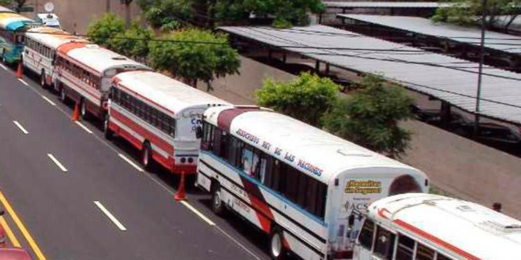 El transporte urbano urge apoyo del gobierno