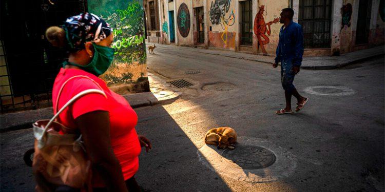 Cuba distribuirá fármaco homeopático contra COVID-19