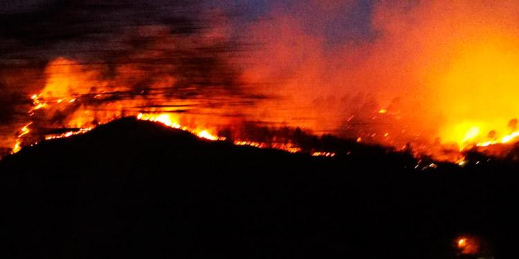 Según testigos e investigaciones, los incendios en La Tigra y aldeas vecinas son causados por mano criminal.