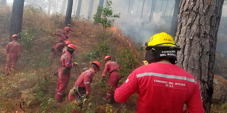 Entre la escasez de agua cada día se registran nuevos incendios en zacateras y en bosques de la capital.