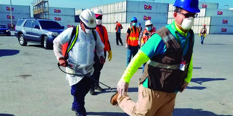 Prosiguen repatriación de marinos hondureños bajo protocolos de COVID-19