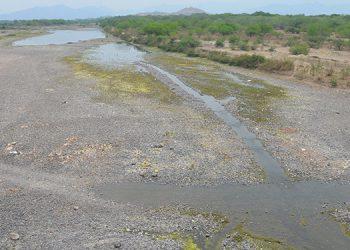 Río Choluteca se seca como riachuelo