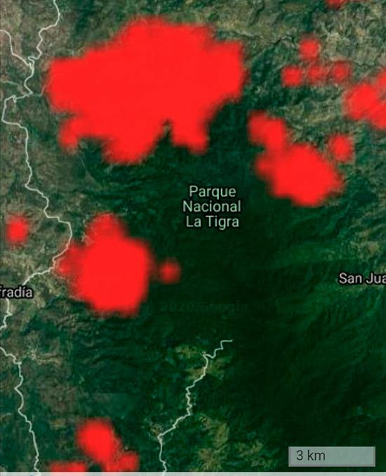 """39 incendios """"devoran"""" bosques de La Tigra"""