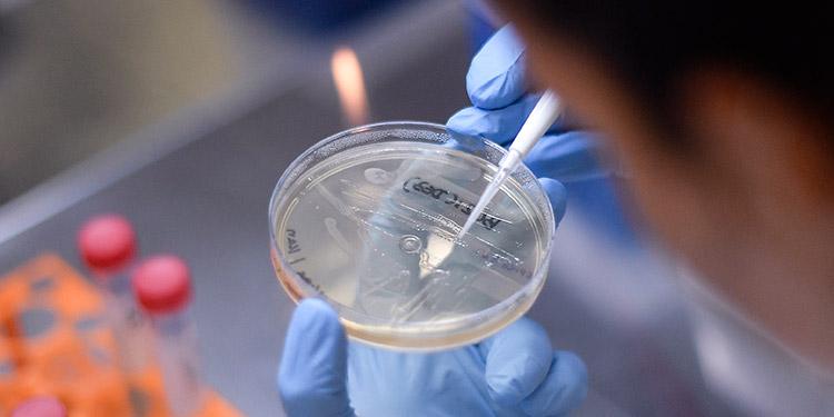 Logran secuenciar genoma del coronavirus y avanzar en su estudio