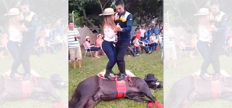 Causa indignación pareja de jóvenes que bailan encima de un caballo