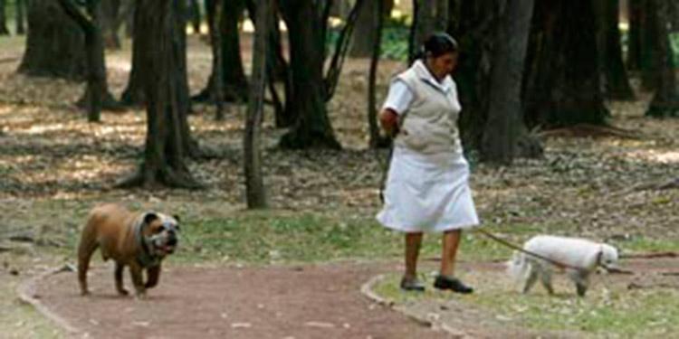 El empleo doméstico vulnera derechos de mujeres en Honduras, según estudio